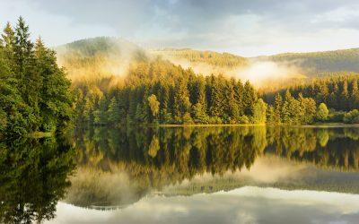 """Herbstliche """"Harztage"""""""